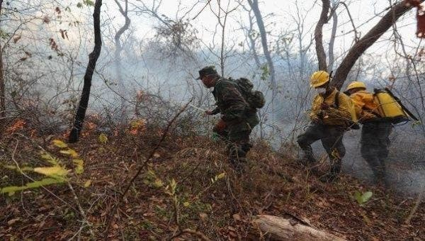 Bolivian soldiers managing a forest fire